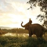Anantara: Taking Thai Hospitality to the World
