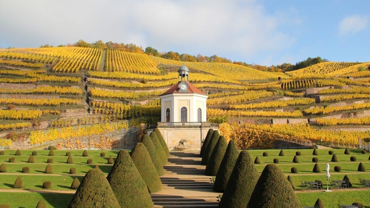 Dresden: Where Nature and Pleasure Meet