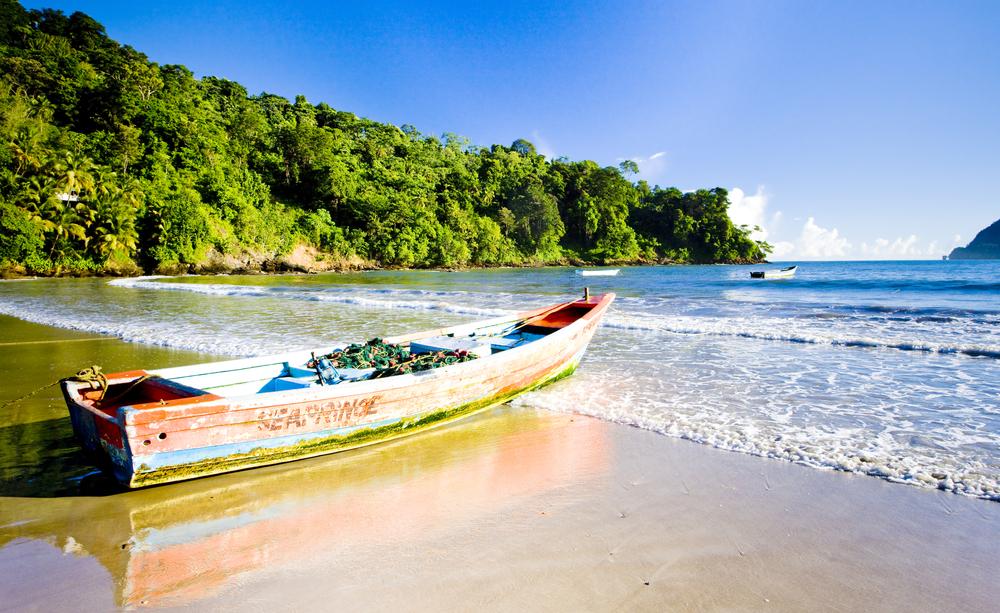 Caribbean Getaway? Maracas Bay
