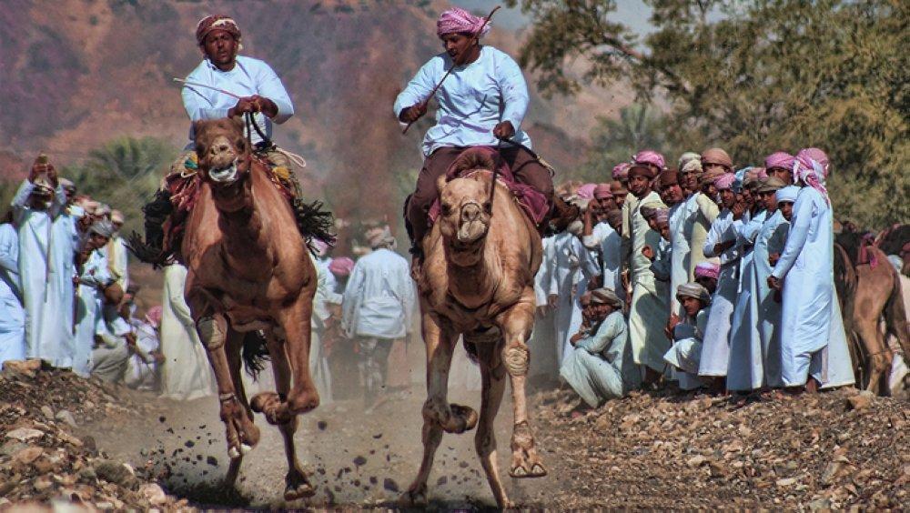 Ibri Festival came race