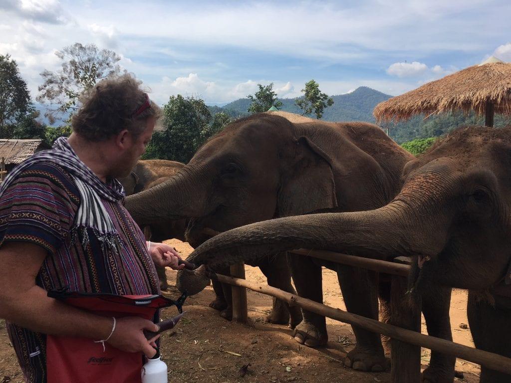 tuk tuk diaries feeding elephants