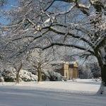 Twelve Days of Christmas at Tatton Park