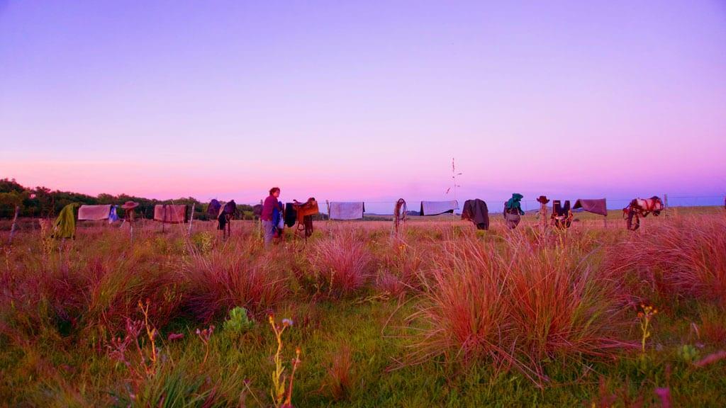 In the Saddle with Uruguay's Horse Whisperer
