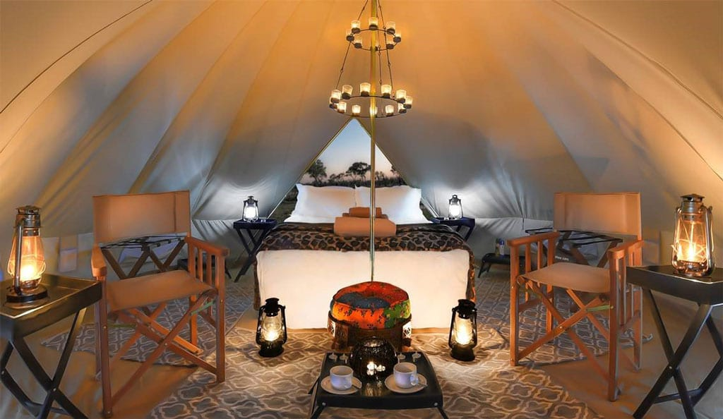 The Lodge at Feline Fields New Luxury Mobile Camp