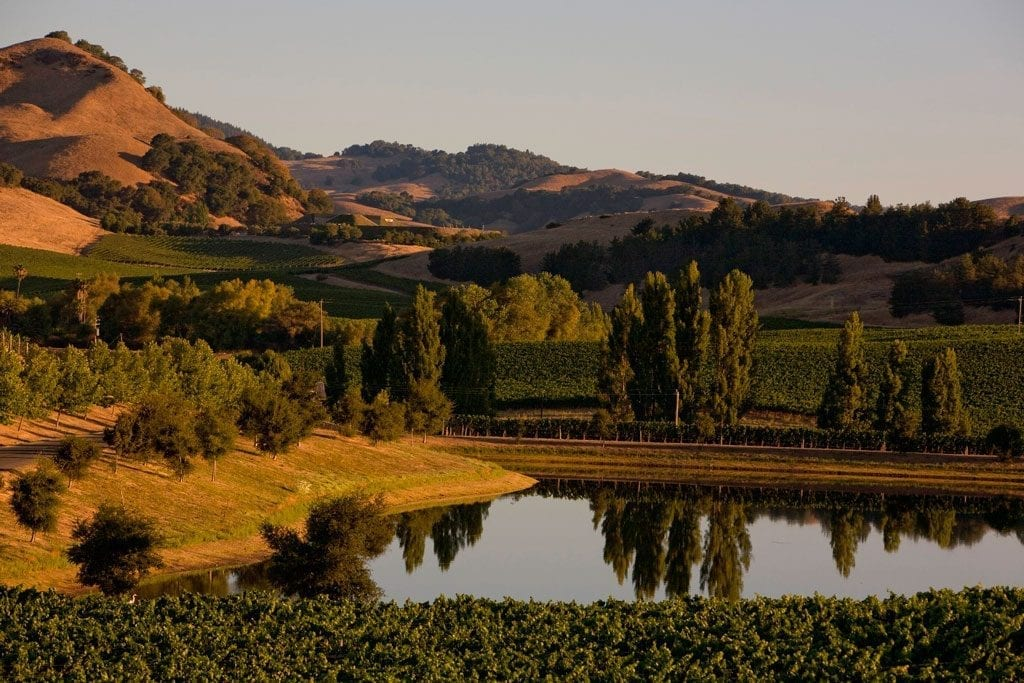 Don't visit San Francisco without visiting the surrounding environs, such as Sonoma County.