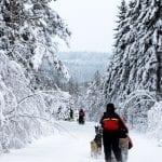 Finland, Jordan, Budapest or Devon for the Half-Term?