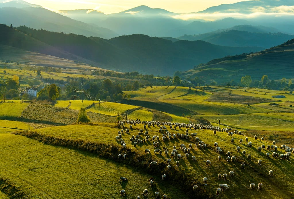 Sunset in Transylvania