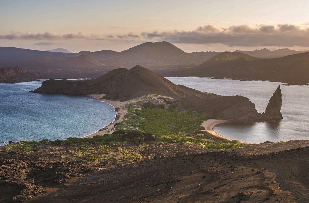 Galapagos Reforestation Partnership