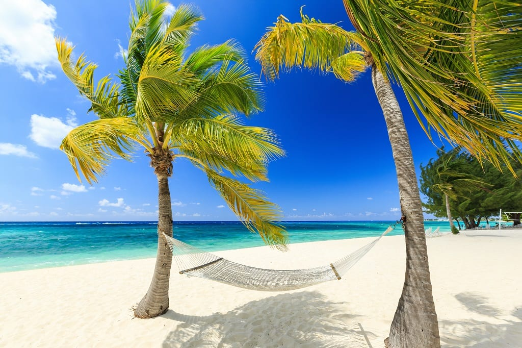 Hammock and palm trees at 7 mile beach, Grand Cayman