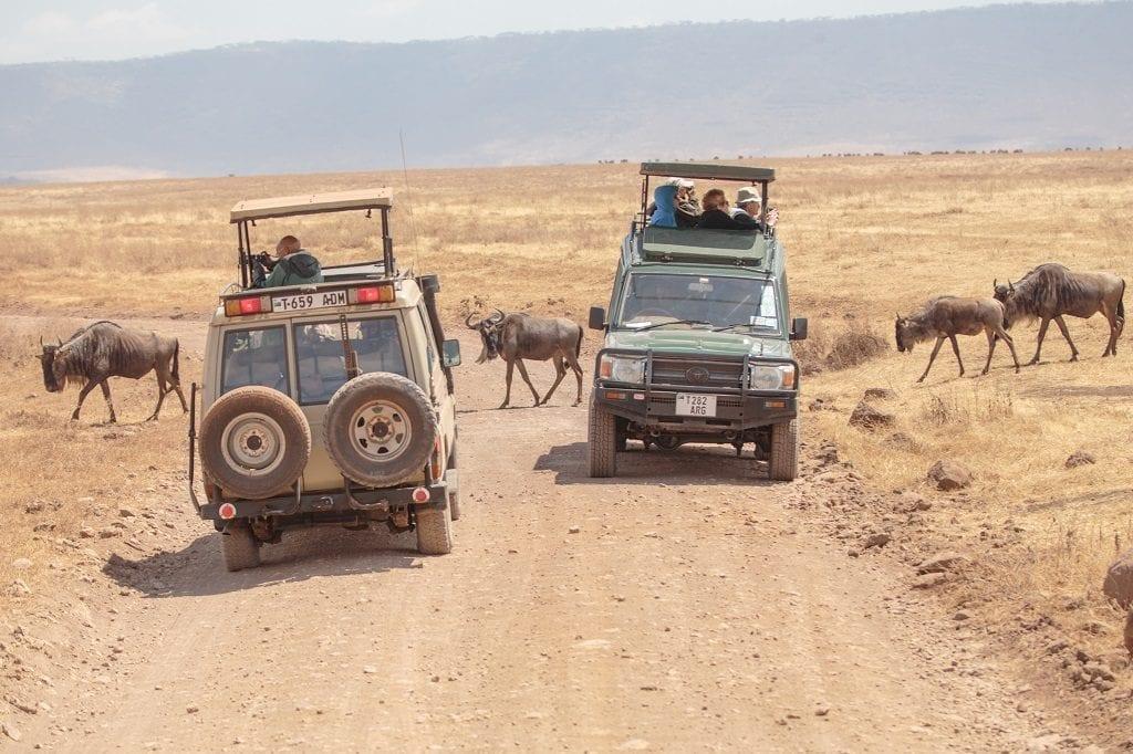African safari tanzania