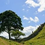 Celtic Trails: Walking Holidays for Beginners