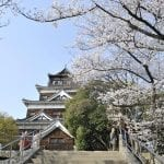 Five Best Cherry Blossom Spots in Setouchi