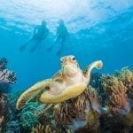 Learn to Scuba Dive: Just Breathe