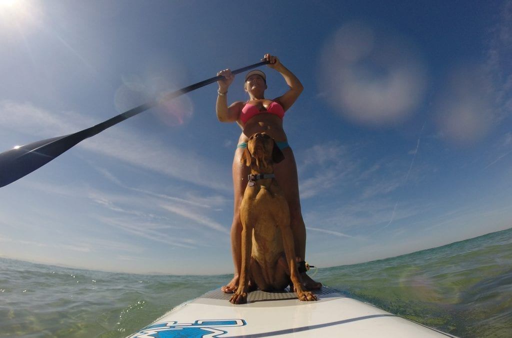 Paddle Boarding for the Over 40s (and dogs)
