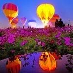 Taiwan International Balloon Festival 2019