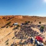 Queensland Festivals: from Camel Races to Pumpkins
