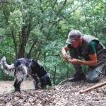 Truffle Hunting at Villa Lena, Tuscany