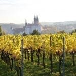 Explore the Hidden Saxony Wine Trail
