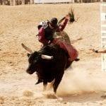 Professional Bull Riders World Finals