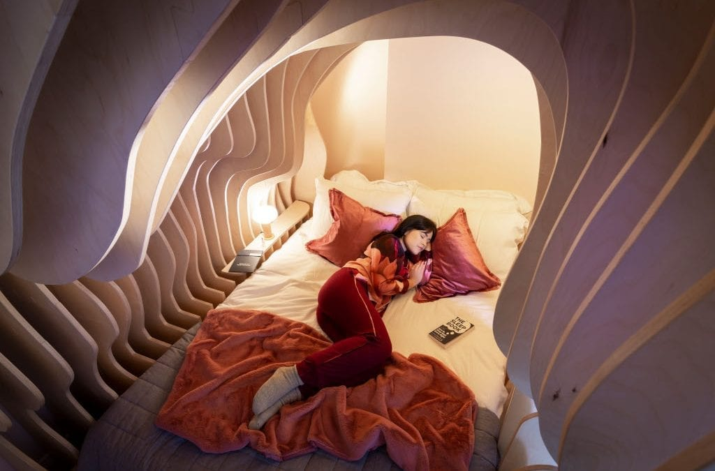Sleep Like a Baby in a Zed Bed-womb