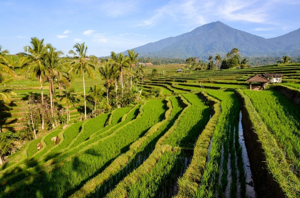 First UK to Bali Non-Stop Flights Welcomed