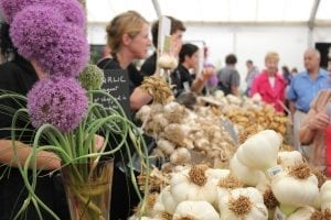 Festivals in UK Isle of Wight Garlic Festival (2)