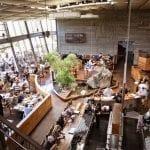 San Diego: California Craft Beer Capital