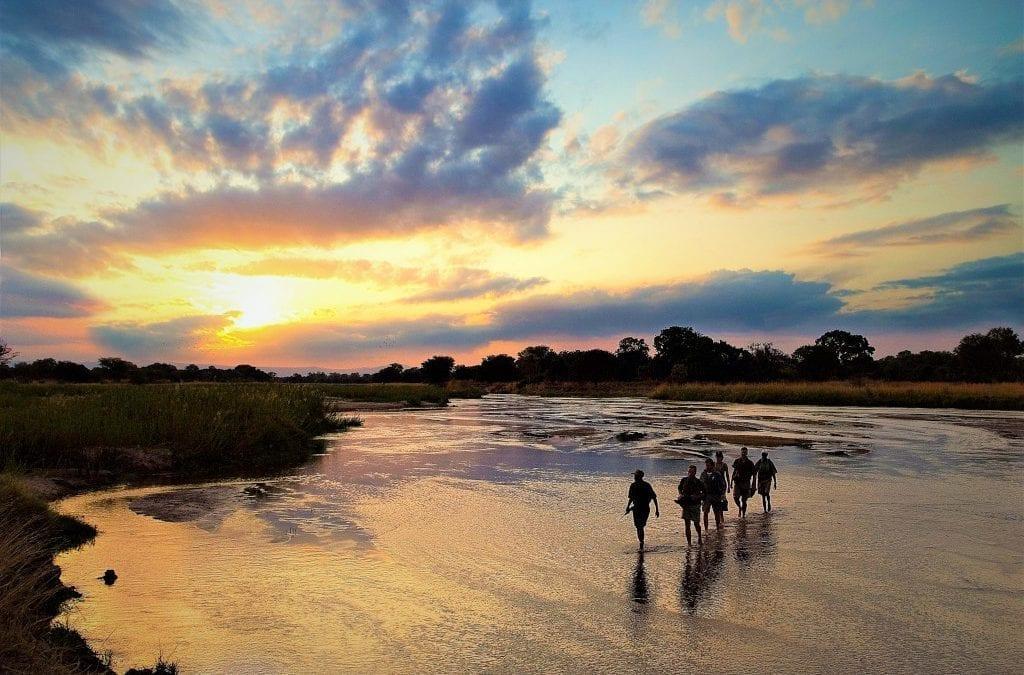 South Luangwa Walking in Zambia