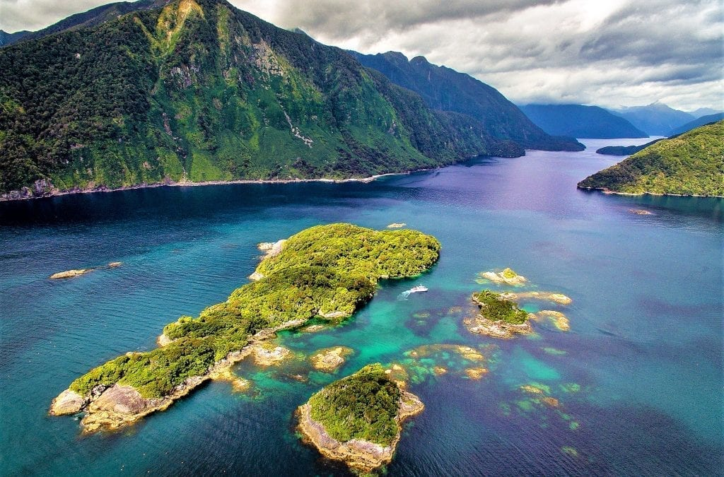 Join a Conservation Project in New Zealand