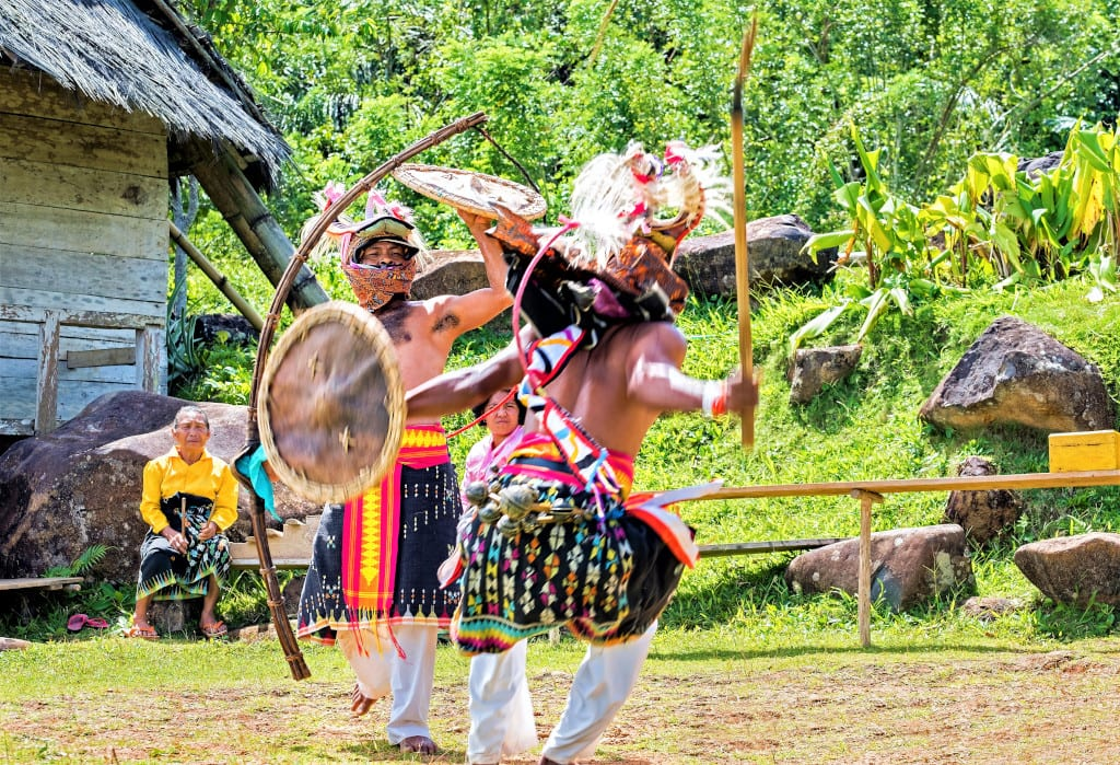 manggarai flores whip fighting