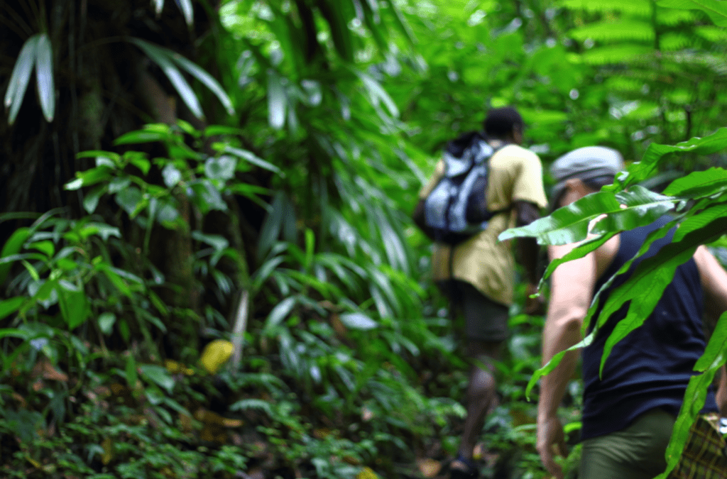 Hike Caribbean launches Dominica Trips