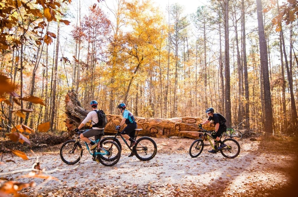 8 Trails to Hike, Bike and Run in Raleigh