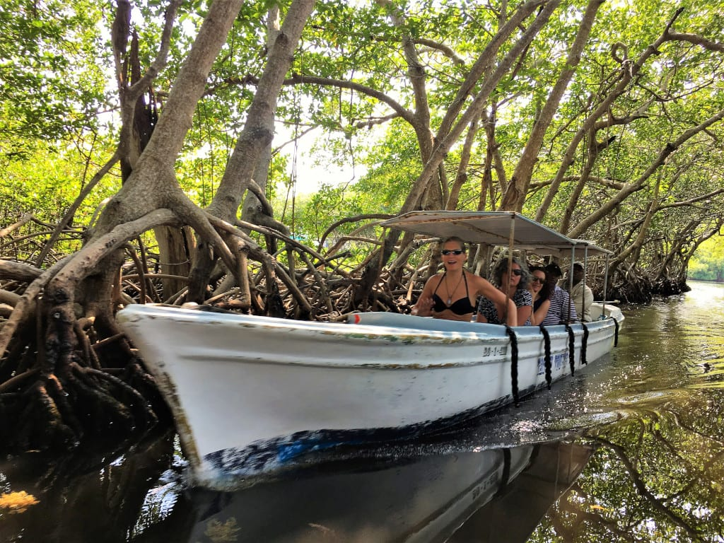Boat trip amid the mangroves in Roatan Honduras