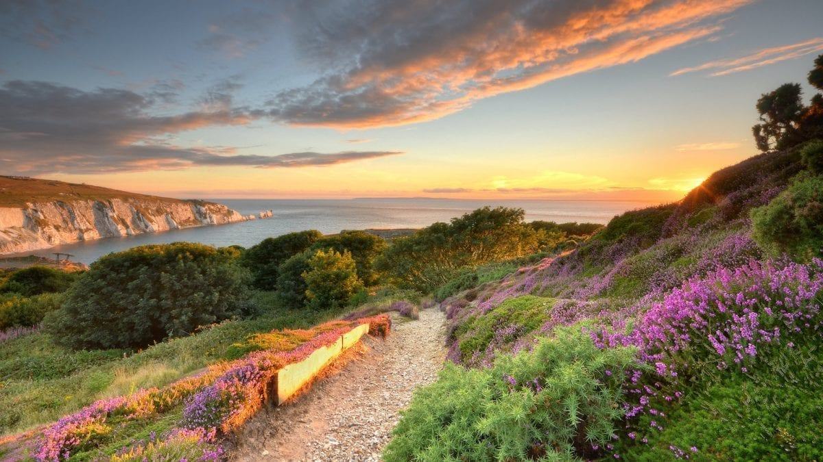 Isle of Wight Declared a Biosphere Reserve
