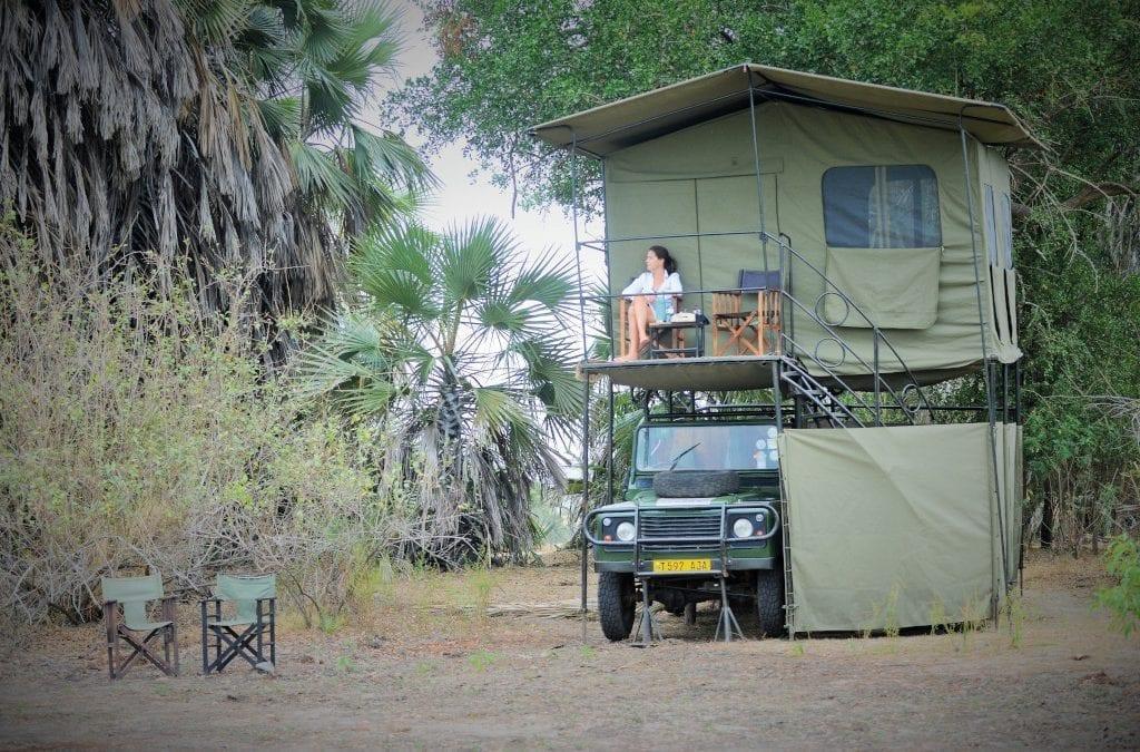 Follow the Cast of BBC's Serengeti