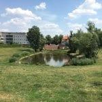 Hufeisensiedlung gardens