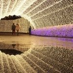 Nabana no Sato Winter Light Festival Japan 2020