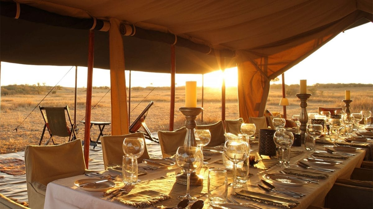 Join a Seasonal Migration Camp in Kenya