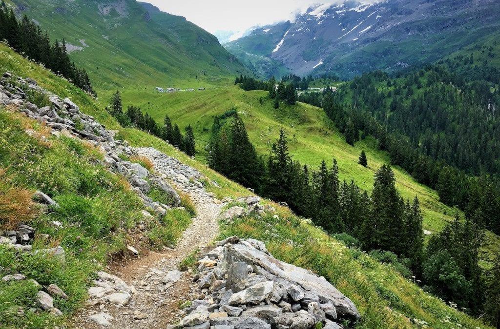 Hiking in the Jungfrau Swiss Alps with Sherlock