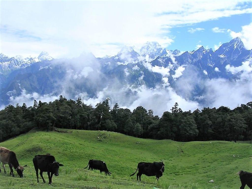 Kumaon, Uttarakhand Villages in India