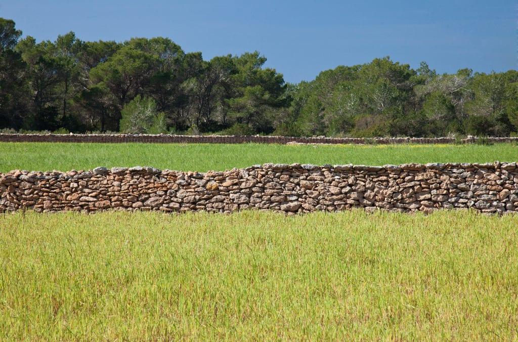 Old brick walls dominate Formentera's terrain