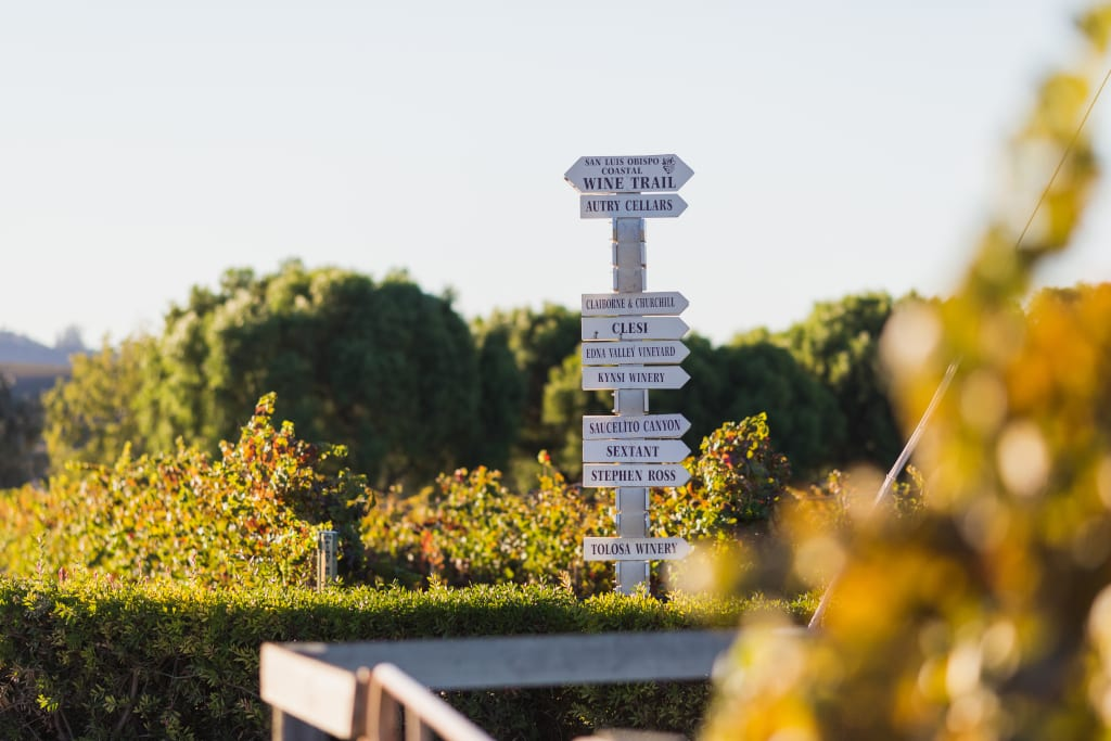 Choosing which winery to visit can be tricky in Edna Valley
