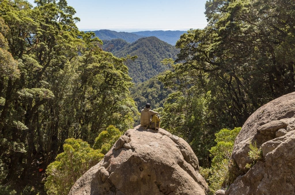 Latest New Zealand Great Walk Opens