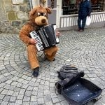 Teddy bear plating the accordion at the Lausanne market