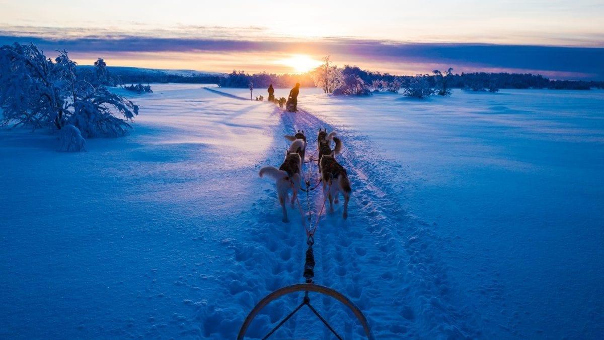 Off-grid Husky-sledding in Finnish Lapland