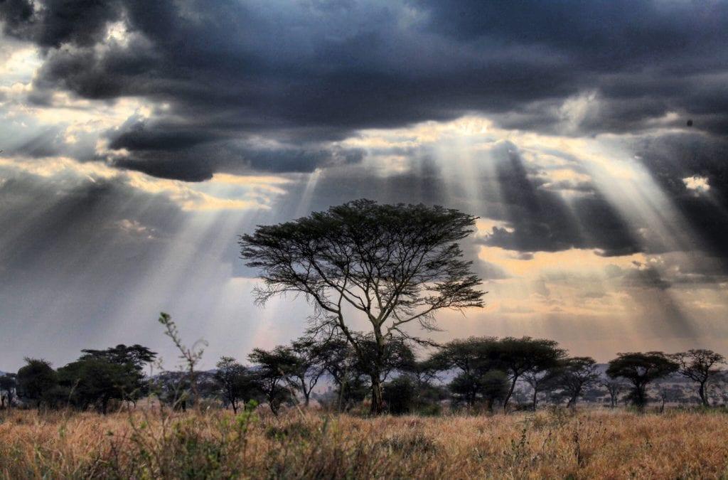 Tanzania Camping Safari by Gondwana Ecotours