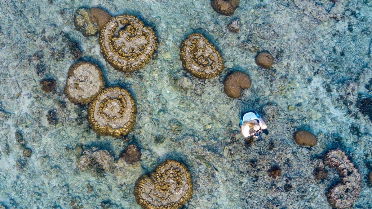 Mergui Archipelago: Paradise Rediscovered