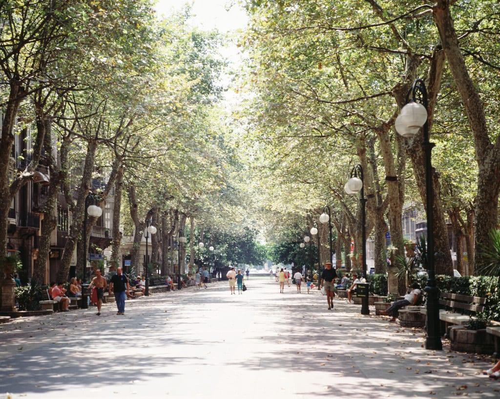 Passeig-des-Born-Palma-de-Mallorca-©-Pedro-Coll