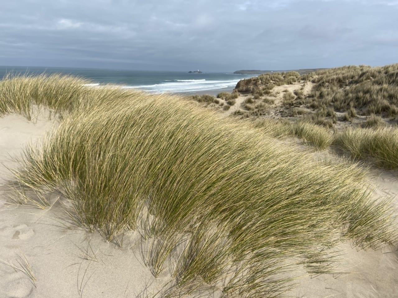 The wonderful, everlasting Hayle sand dunes
