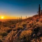 Scottsdale's McDowell Sonoran Preserve at sunset